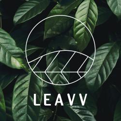 LEAVV_Tekengebied 1